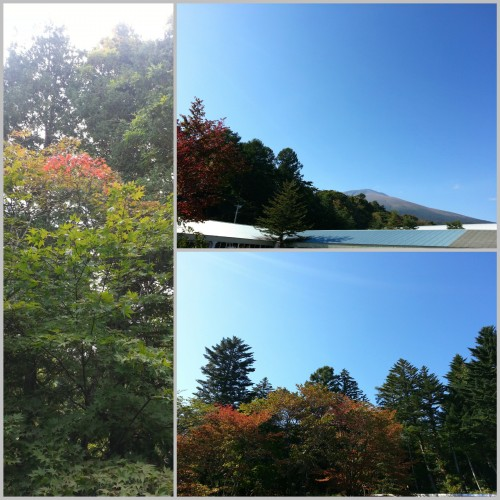 20140927_165853_Fotor_Collage1